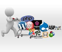 Web Application Developers